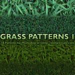Grass Patterns 1
