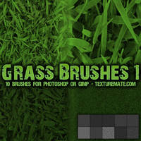 Grass Brushes 1 by AscendedArts