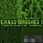 Grass Brushes 1