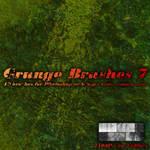 Grunge Brushes 7