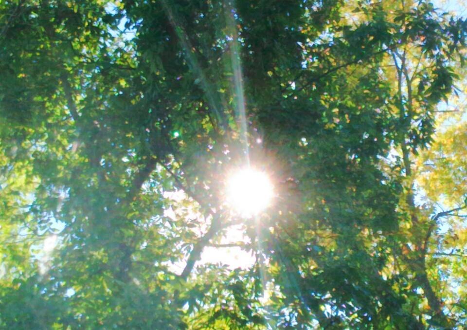 Bright Sunshine by SimplyKristina