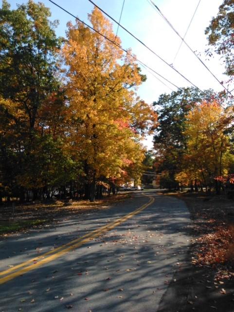 October true beauty by SimplyKristina