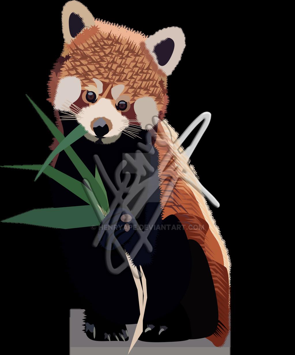Realistic Illustration Red Panda By Henryape On Deviantart