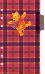 Winnie the Pooh Plastic 2