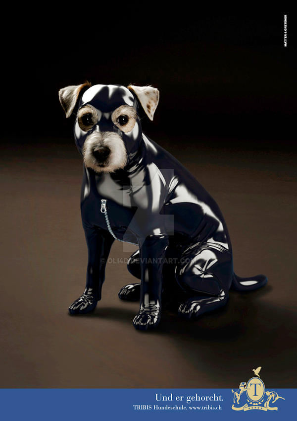Dog training school ad by Oli4D