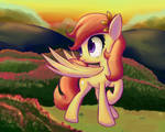 Request: Sunny Hooves