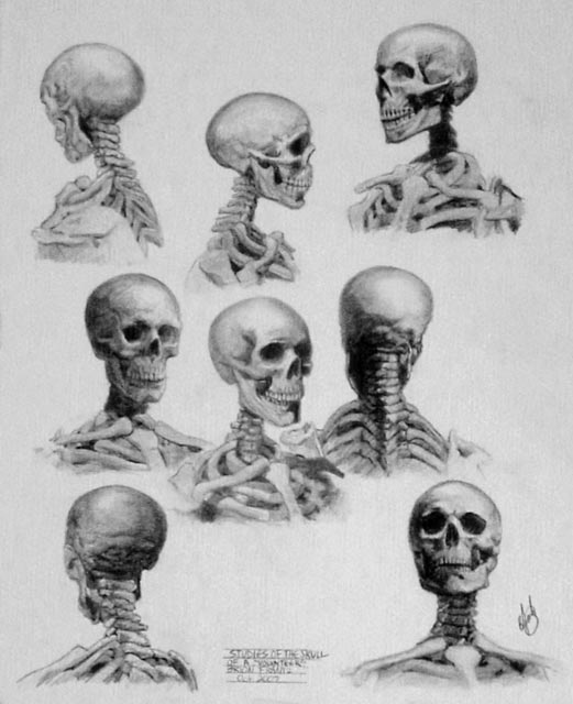 Brion Frantz - Skull Studies by Beware-of-Artist