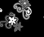 Lepus ovipets tattoo- Head- Female by rainismysunshine