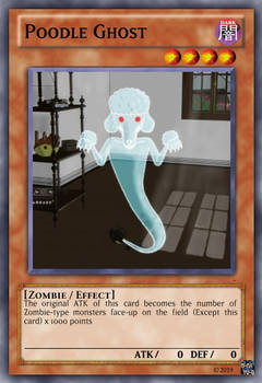 Poodle Ghost