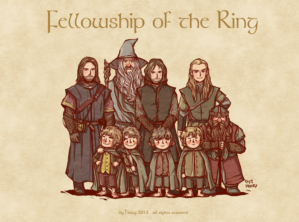 Fellowship Of The Ring Cliffnotes