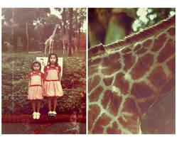 The Zoo by princessmartini