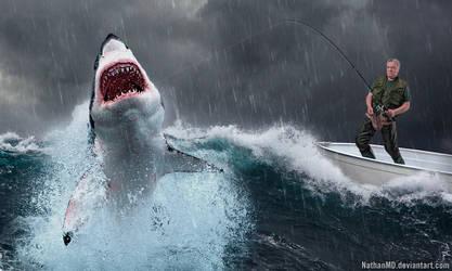 Shark Storm