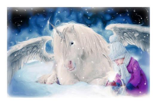 Little Miss Unicorn