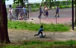 'Scooter vs Basketball'
