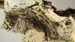 'Alpine Roots'