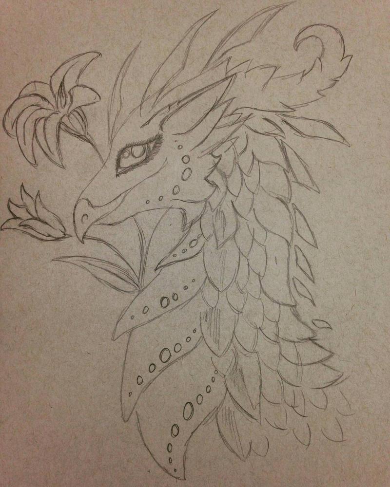Lily Dragon Sketch by arrissuu