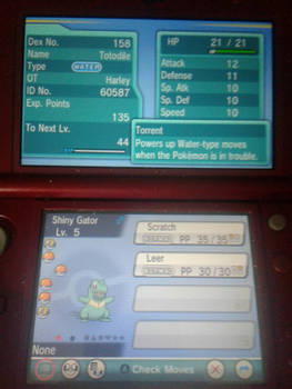 shiny totodile in pokemon alpha saphire at 278 SRs