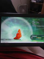 shiny metapod pokemon let's go eevee