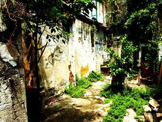 overgrowth by whiteplusorange