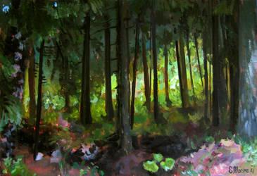 a walk in the woods by Illu-sab