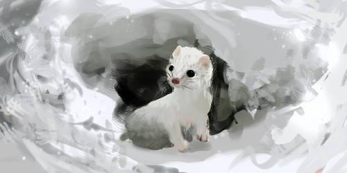 White Ferret by Illu-sab