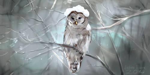 Snowy Owl by Illu-sab