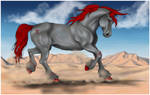 -:-Desert's Symphony-:-