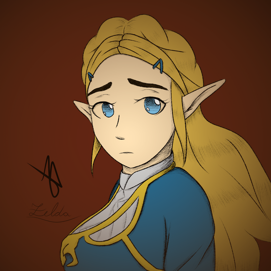 Zelda - Breath of the Wild by Andre-APM