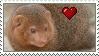 Dwarf Mongoose Love Stamp by Nukeleer
