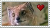 Yellow Mongoose Love Stamp by Nukeleer