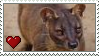 Fossa Love Stamp by Nukeleer