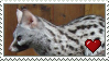 Genet Love Stamp by Nukeleer