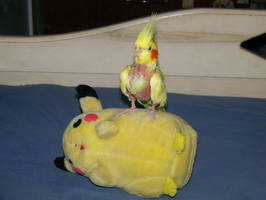 Pikachu Slayer by Nukeleer