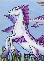 Hippocampus - Sketch Card by ElainePerna