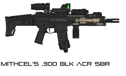 Mitchel's .300 BLK ACR SBR-One Take