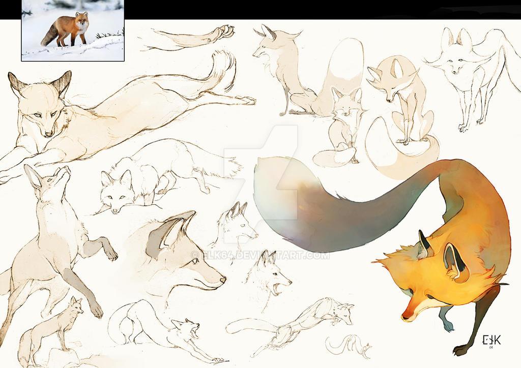 Fox sketch by ELK64