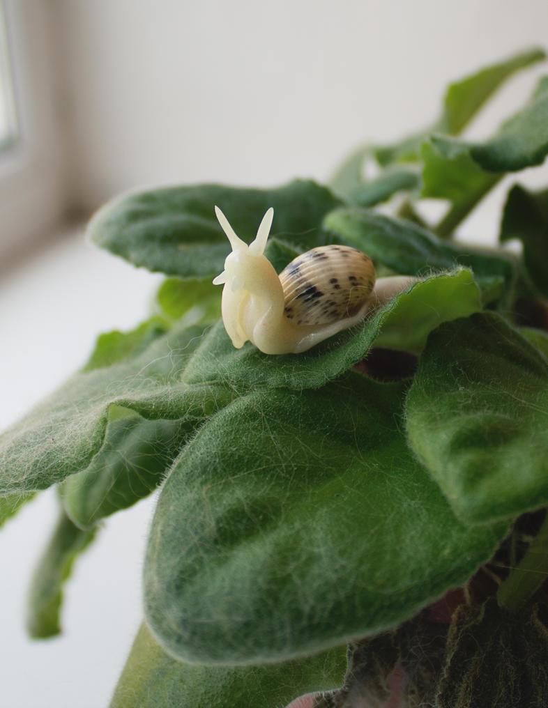 Little Snail by mar-rie
