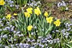 Spring 9282