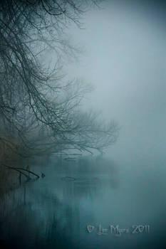 December Fog 01