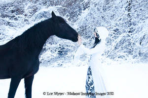 Winter Epona 02
