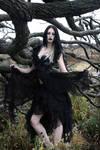 Gothique 07