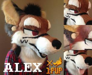 Alex by 1PUPsuits