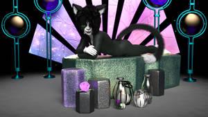 Tuxedo Cat Beefcake