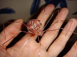 copper spider by steorium