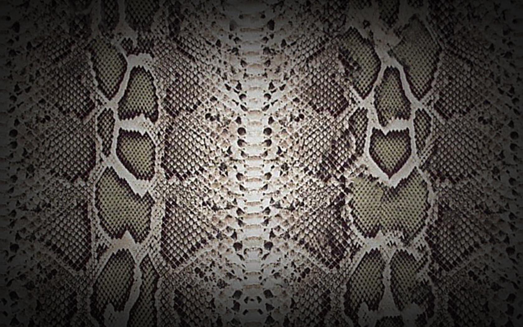 Textures - Snake Skin - wide by Loo-Lee