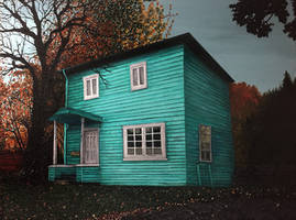 The Blue House (2017)