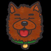 Catioro feliz (happy dog)