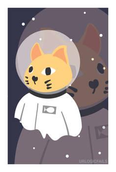 2 Space 2 Cat