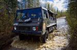 Denali Backcountry Safari - Tour and Travels