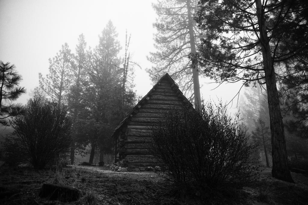 The Cabin III by gorcrow